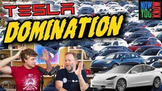 Tesla Domination - I dybden
