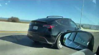 Tesla Model Y Spotted
